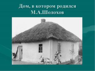 Дом, в котором родился М.А.Шолохов
