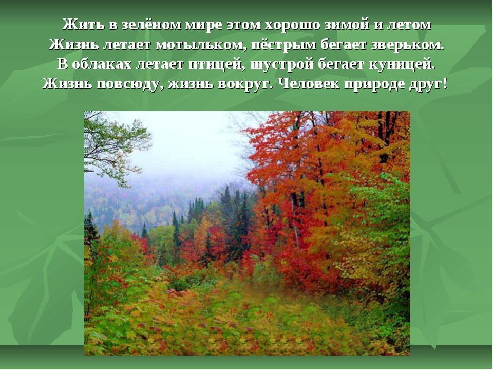 Жить в зелёном мире этом хорошо зимой и летом Жизнь летает мотыльком, пёстры...