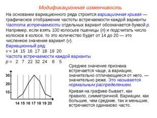 Модификационная изменчивость На основании вариационного ряда строится вариаци
