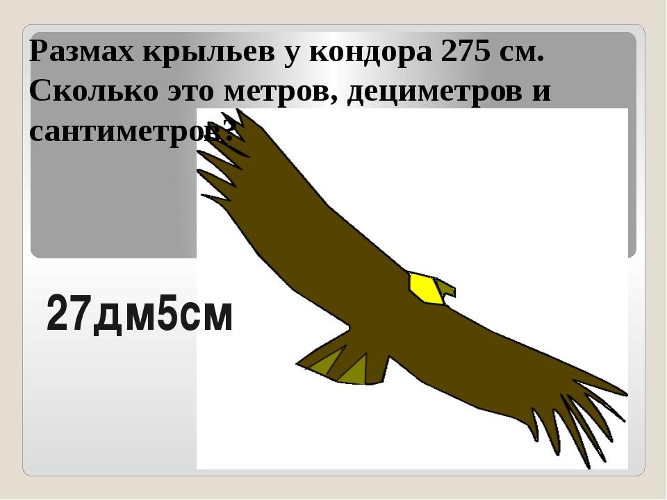 Размах крыльев у кондора 275 см. Сколько это метров, дециметров и сантиметров...