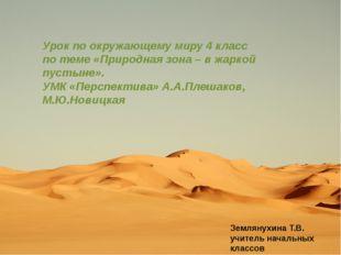 Урок по окружающему миру 4 класс по теме «Природная зона – в жаркой пустыне»
