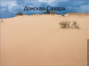 Донская Сахара