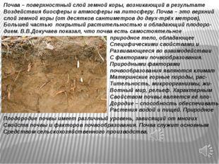 Почва – поверхностный слой земной коры, возникающий в результате Воздействия