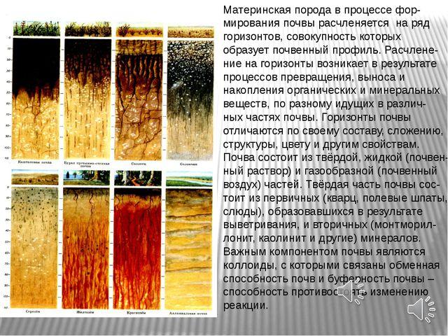 Материнская порода в процессе фор- мирования почвы расчленяется на ряд горизо...