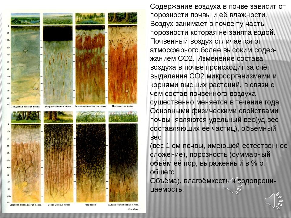 Содержание воздуха в почве зависит от порозности почвы и её влажности. Воздух...
