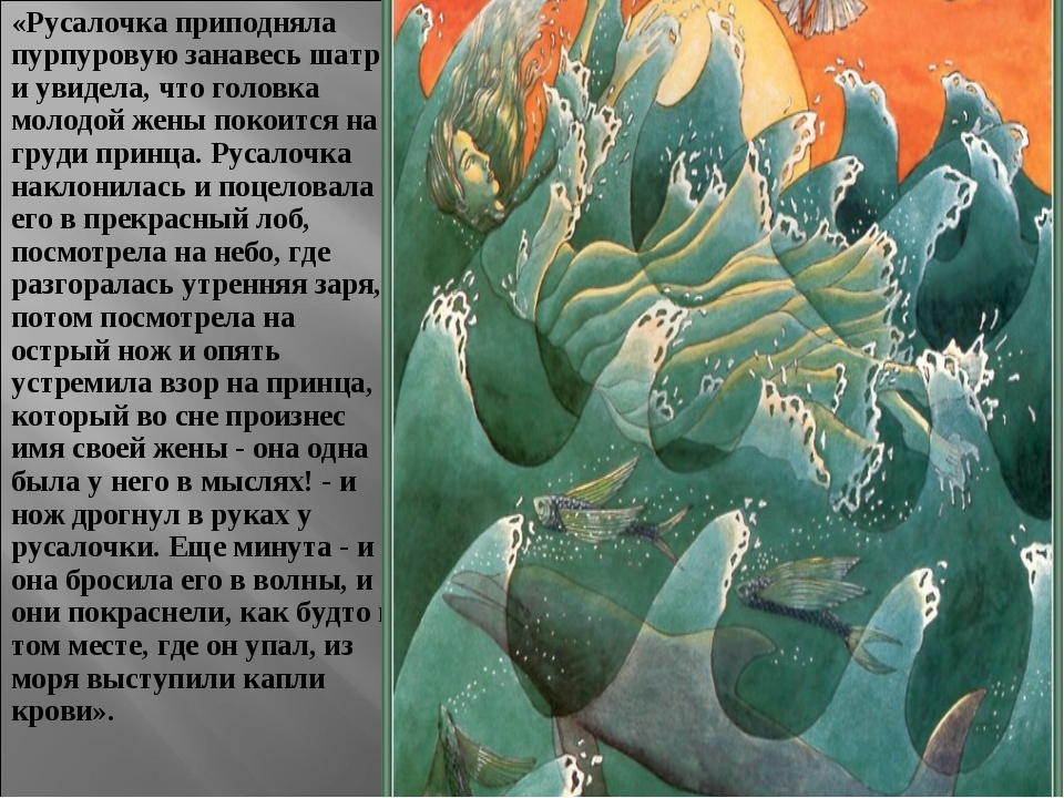 «Русалочка приподняла пурпуровую занавесь шатра и увидела, что головка молодо...