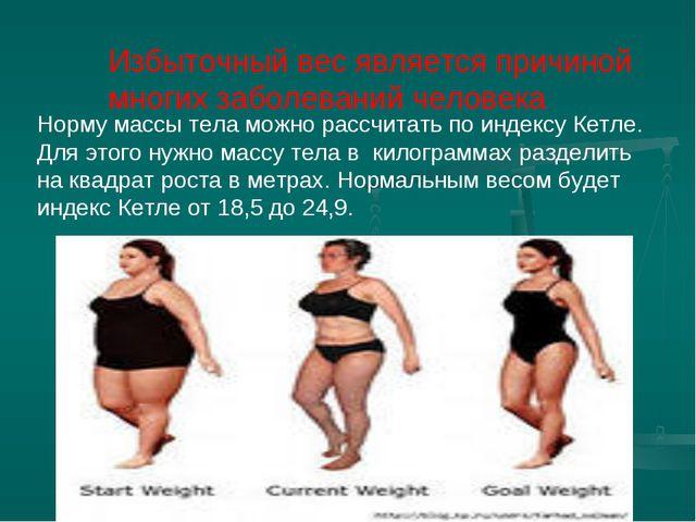 Избыточный вес является причиной многих заболеваний человека Норму массы тел...