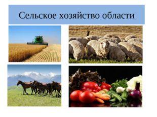 Сельское хозяйство области