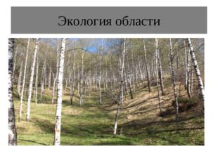 Экология области