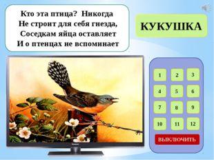 Интернет – ресурсы Ласточки в гнезде - http://abali.ru/wp-content/uploads/201