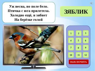 1 2 3 4 5 6 7 8 9 12 11 10 ВЫКЛЮЧИТЬ Угадайте, что за птичка: Тёмненькая нев