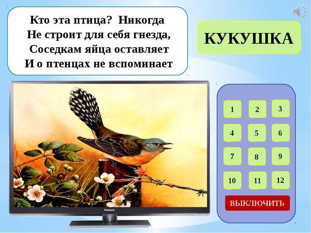 Интернет – ресурсы Ласточки в гнезде - http://abali.ru/wp-content/uploads/201...