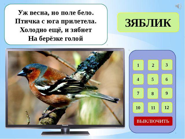 1 2 3 4 5 6 7 8 9 12 11 10 ВЫКЛЮЧИТЬ Угадайте, что за птичка: Тёмненькая нев...