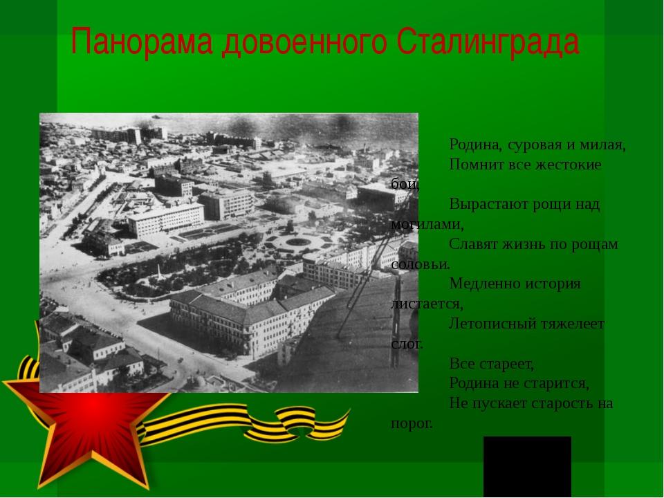 Панорама довоенного Сталинграда Родина, суровая и милая, Помнит все жестокие...