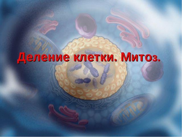 Деление клетки. Митоз.