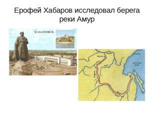 Ерофей Хабаров исследовал берега реки Амур