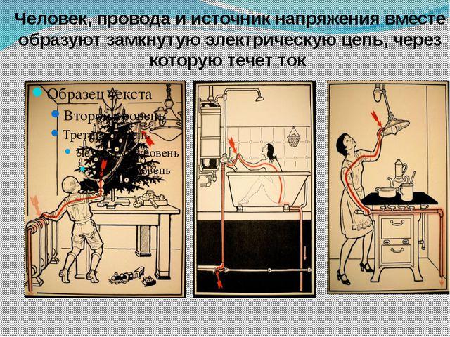 Тело человека – проводник электрического тока Почему это возможно?