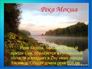 Река Мокша, большой правый приток Оки, образуется в Пензенской области и