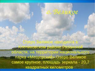 Озеро Великое находится в Клепиковском районе Рязанской области, на территори