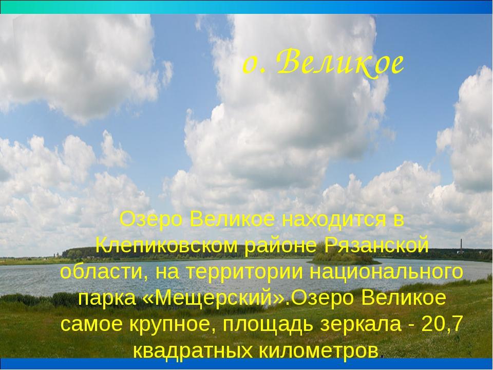 Озеро Великое находится в Клепиковском районе Рязанской области, на территори...