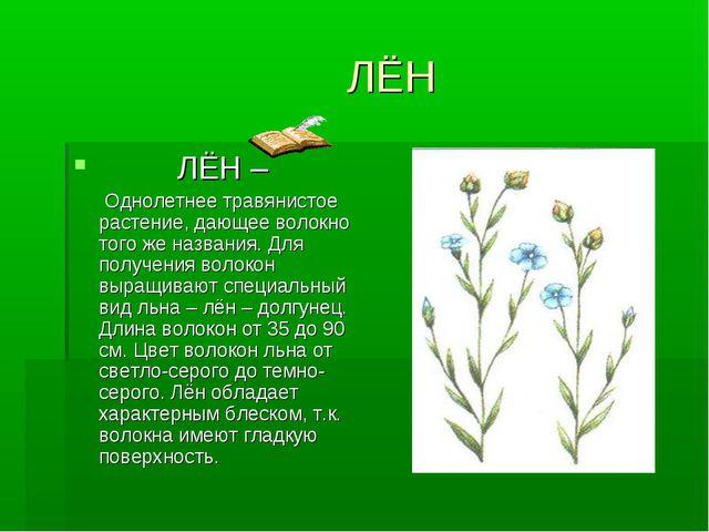 ЛЁН ЛЁН – Однолетнее травянистое растение, дающее волокно того же названия....