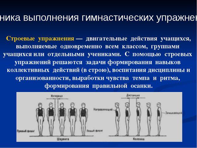 Техника выполнения гимнастических упражнений Строевые упражнения — двигательн...
