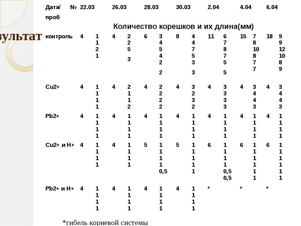 Результаты *гибель корневой системы Дата/№проб 22.03 26.03 28.03 30.03 2.04 4...