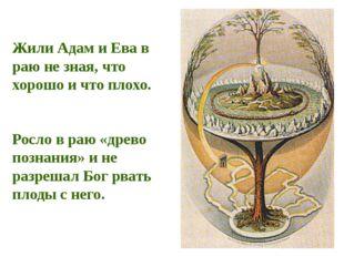 Жили Адам и Ева в раю не зная, что хорошо и что плохо. Росло в раю «древо поз