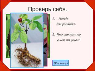 Проверь себя. Назови это растение. 2. Что интересного о нём ты узнал? Венерин