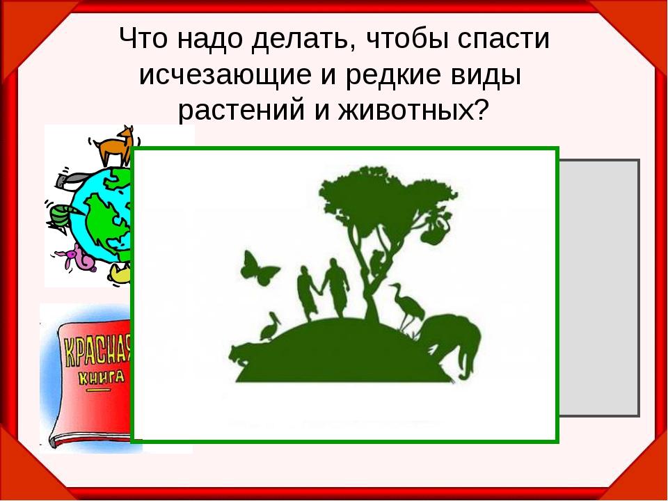 Что надо делать, чтобы спасти исчезающие и редкие виды растений и животных? З...