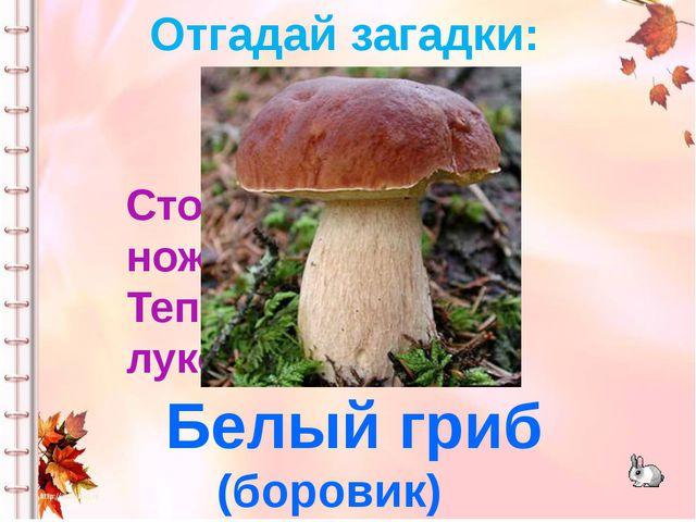 Стоял на крепкой ножке, Теперь лежит в лукошке. Белый гриб (боровик) Отгадай...