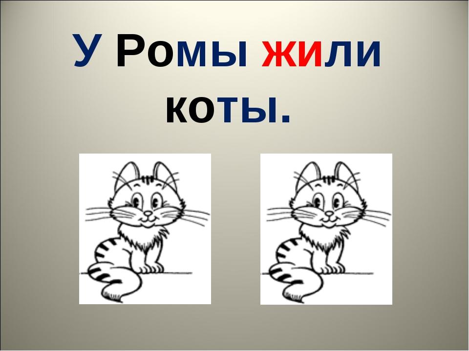 У Ромы жили коты.