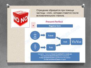 Отрицание образуется при помощи частицы «not», которая ставится после вспомог