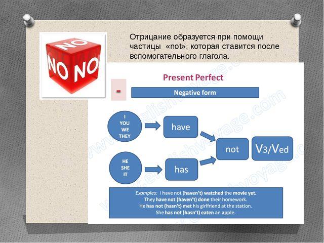 Отрицание образуется при помощи частицы «not», которая ставится после вспомог...
