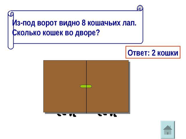 * Из-под ворот видно 8 кошачьих лап. Сколько кошек во дворе? Ответ: 2 кошки