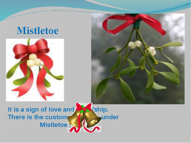 Mistletoe It is a sign of love and friendship. There is the custom of kissing...
