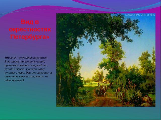 Вид в окрестностях Петербурга» Шишкин - художник народный. Всю жизнь он изуч...