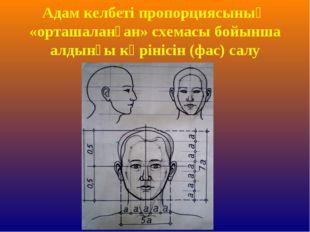 Адам келбеті пропорциясының «орташаланған» схемасы бойынша алдынғы көрінісін
