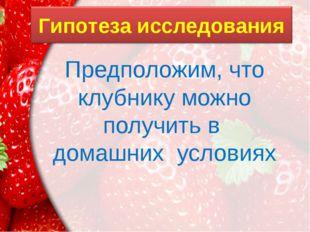 Предположим, что клубнику можно получить в домашних условиях ProPowerPoint.Ru