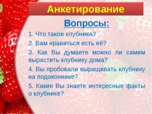 Вопросы: 1. Что такое клубника? 2. Вам нравиться есть её? 3. Как Вы думаете м