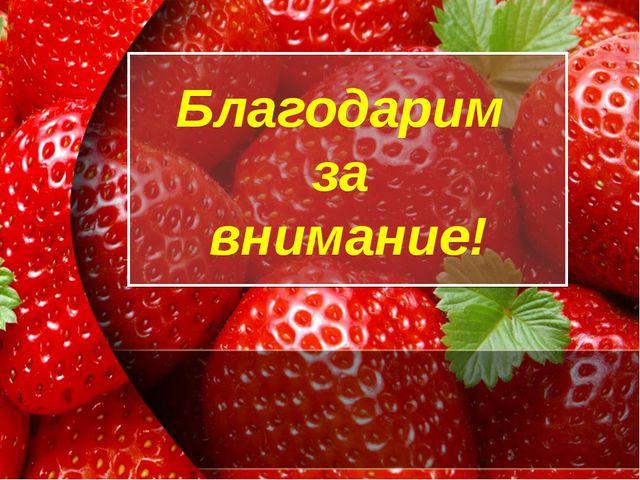 Благодарим за внимание! ProPowerPoint.Ru