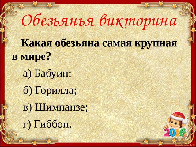 Обезьянья викторина Какая обезьяна самая крупная в мире? а) Бабуин; б) Горилл...