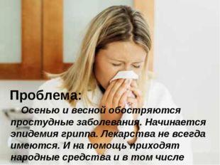 Проблема: Осенью и весной обостряются простудные заболевания. Начинается эпид