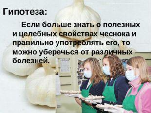 Гипотеза: Если больше знать о полезных и целебных свойствах чеснока и правиль