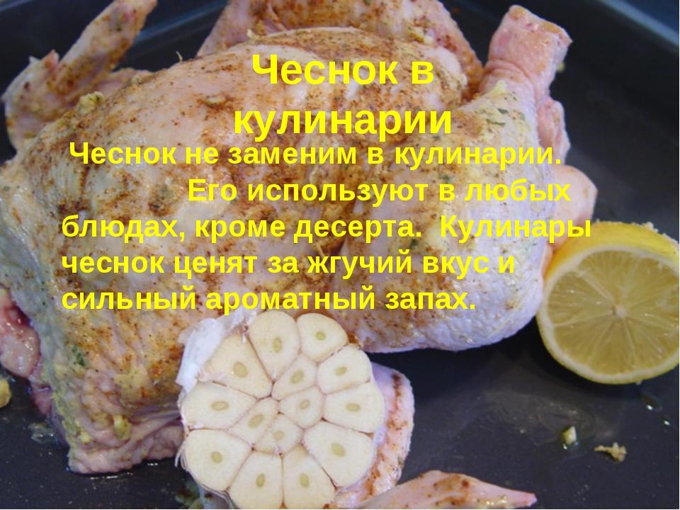 Чеснок не заменим в кулинарии. Его используют в любых блюдах, кроме десерта....