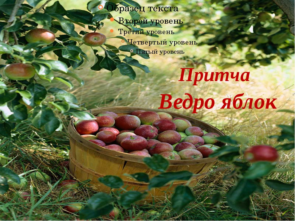 Ведро яблок Притча