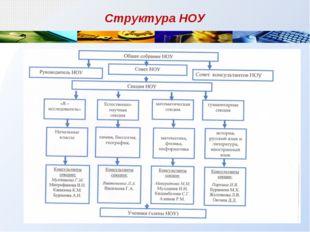 Структура НОУ