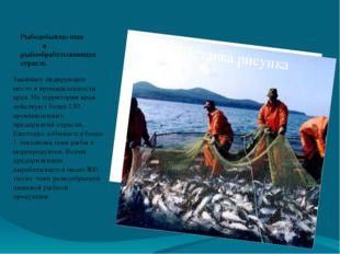 Рыбодобываю-щая и рыбообрабатывающая отрасль Занимает лидирующее место в пром