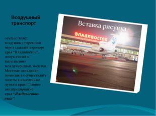 Воздушный транспорт  осуществляет воздушные перевозки через главный аэропорт