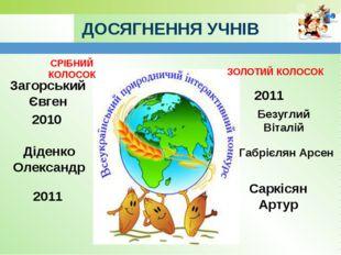 ДОСЯГНЕННЯ УЧНІВ СРІБНИЙ КОЛОСОК ЗОЛОТИЙ КОЛОСОК Загорський Євген 2010 Діденк